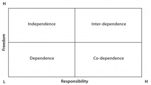 freedom responsibility matrix
