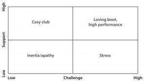 support challenge matrix