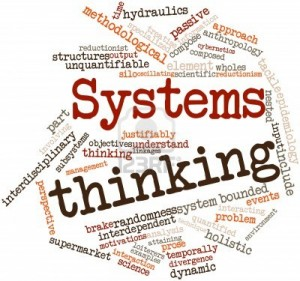 systems coaching